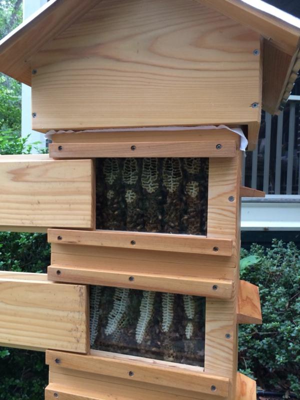 Bienenstock selber bauen DIY Projekt