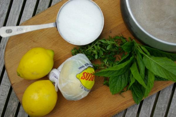 Kräuterlimonade selber machen Limonade mit Minze zubereiten