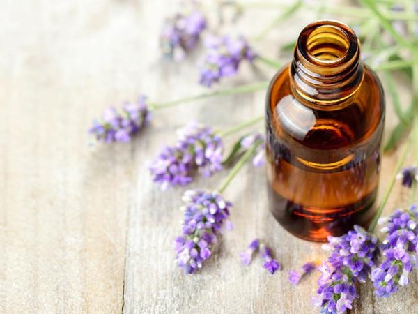 Mückenspray selber machen ätherische Öle verwenden Lavendel