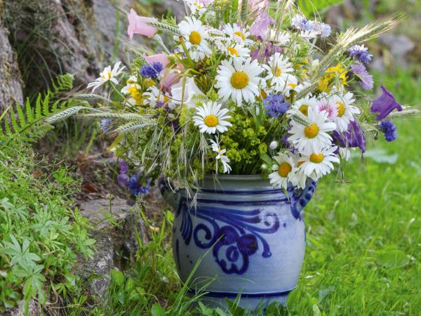 Margeriten andere Wiesen-und Gartenblumen im runden Tongefäß in Blau