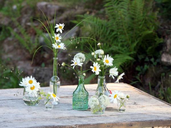 Margeriten in Glasgefäßen Vasen auf dem Tisch als Deko