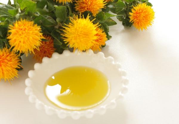 Saflorpflanze Distelöl gesundheitliche Vorteile