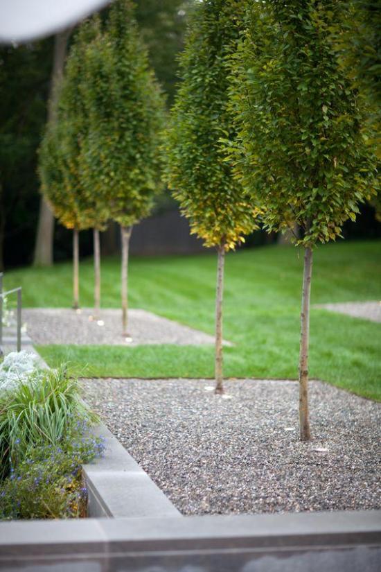 Tolle und sehr moderne Gartengestaltung