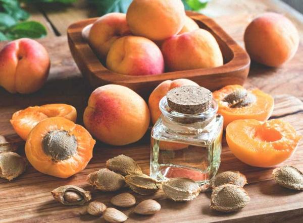 aprikosenkerne gesund nährwerte