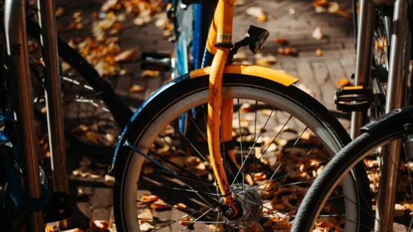 citybike tipps kaufentscheidung