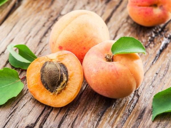 gesunde aprikosen nährwerte