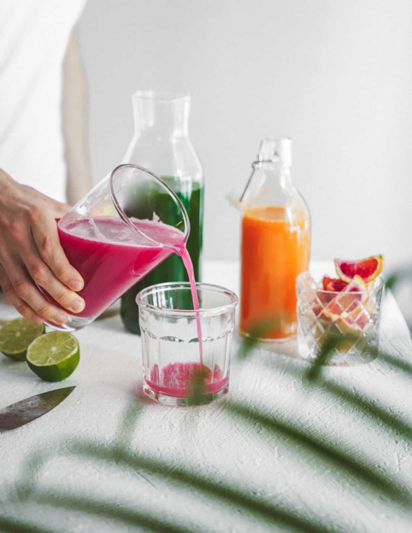 leckere gesunde sommer entsafter rezepte