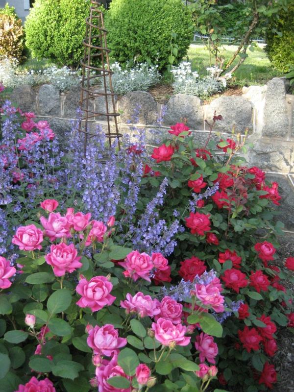 stauden gartengestaltung rosen rosenbegleiter