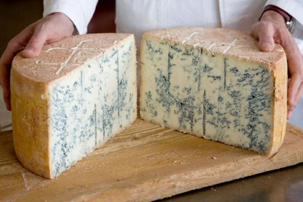 verschiedene Käsesorten Blauschimmelkäse Gorgonzola