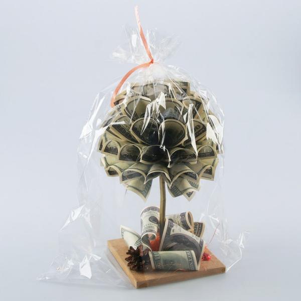 Geldbaum basteln – Kreative Geschenkideen für jeden Anlass kleine geschenk idee unter folie