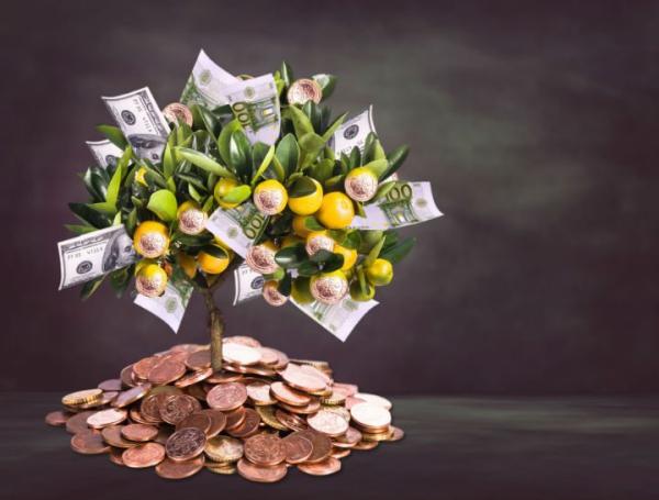 Geldbaum basteln – Kreative Geschenkideen für jeden Anlass zitronen baum geld geschenk idee