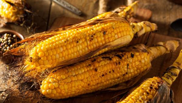 Maiskolben grillen gegrillter Mais schmeckt gut aber viele Kohlenhydrate kalorienreich