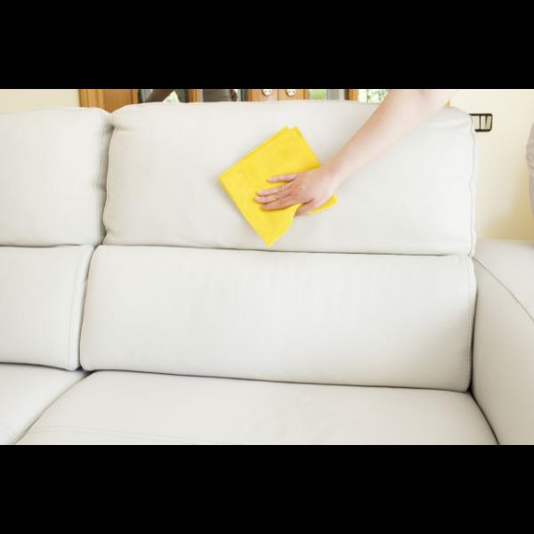 Sofa reinigen Putzen mit dem Schwamm