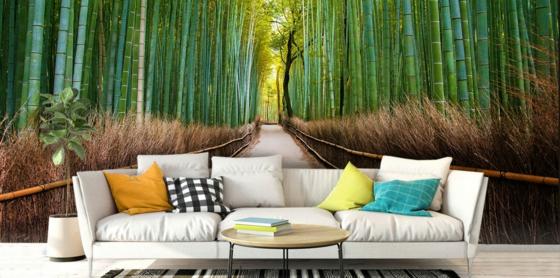 bambuswald 3d fototapeten wohnzimmer