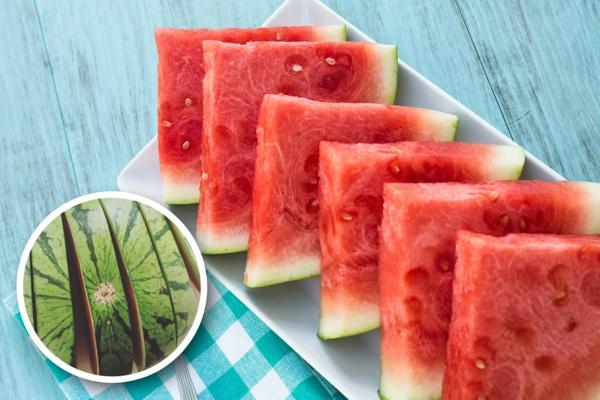 gesunde wassermelonen schale essen