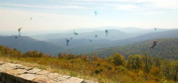 schöne panorama mit mouches volantes