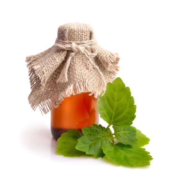 ätherisches Patchouli Öl Vorteile Blätter Flasche