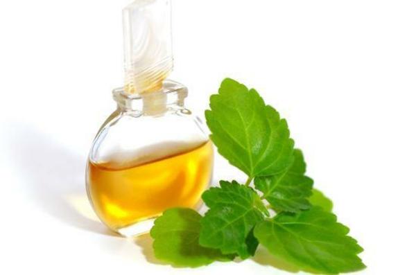 ätherisches Patchouli Öl Vorteile Blätter