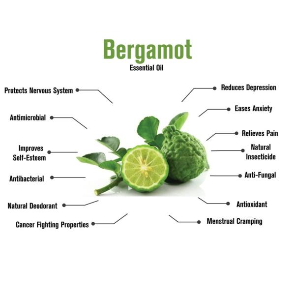 Bergamotte Öl Pflanze Bestandteile