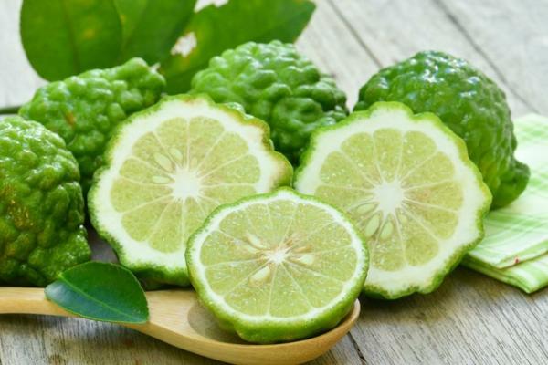 Bergamotte Öl Pflanze Zitrusfrucht