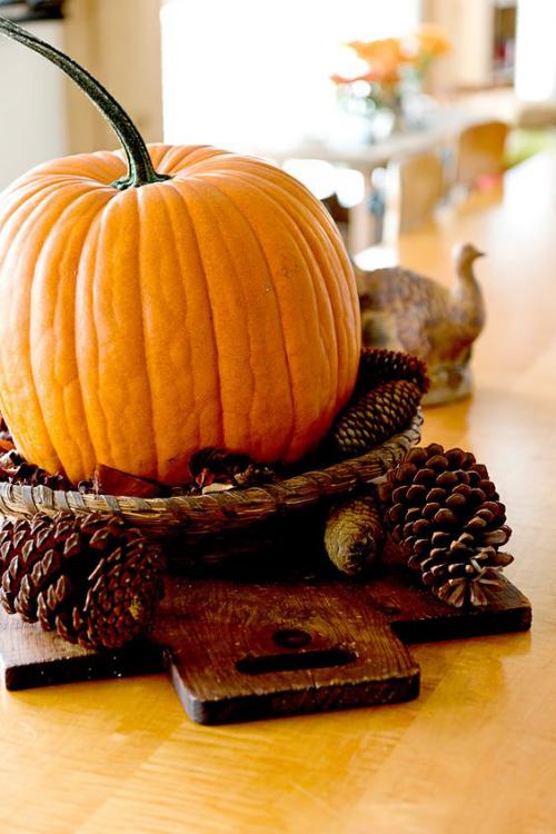 Herbstdeko mit Tannenzapfen Zentralstück großer orangefarbener Kürbis Zapfen rund herum