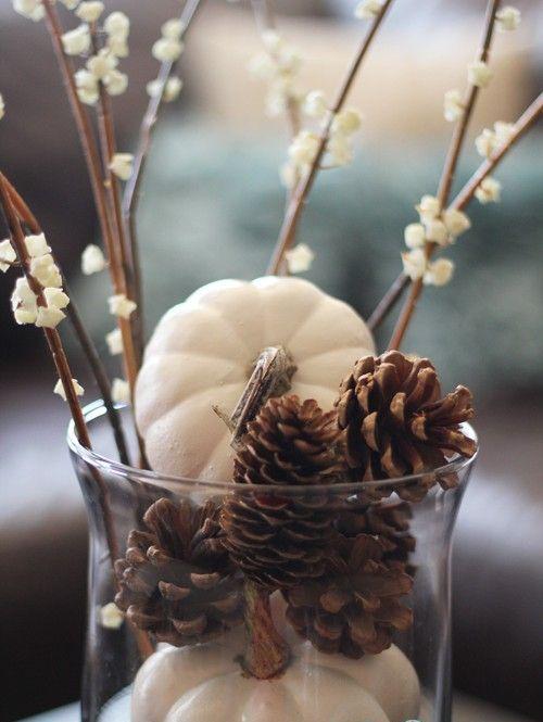 Herbstdeko mit Tannenzapfen hohes Glas mit Zapfen blühende Barbara-Zweige weiße Baby Boo Kürbisse