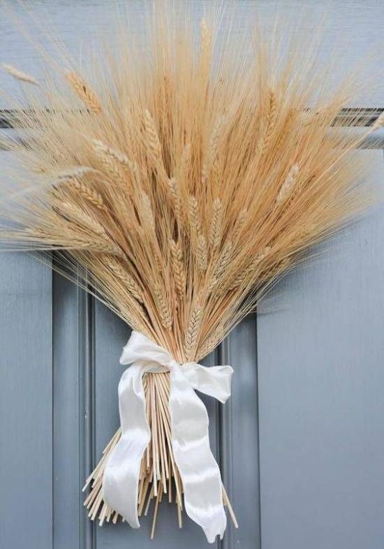 Φθινοπωρινή διακόσμηση με σιτάρι μια δέσμη μίσχων σιταριού με ένα τόξο δεμένο ως διακόσμηση πόρτας