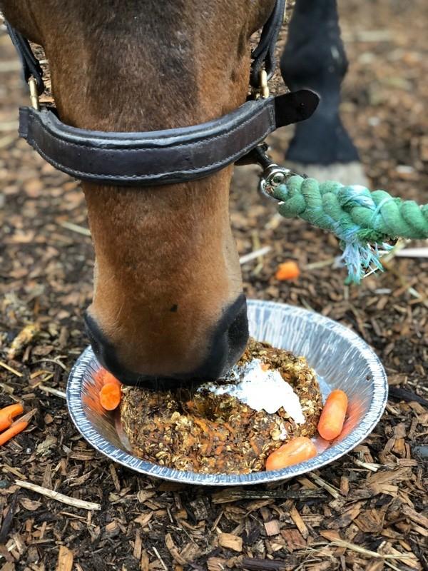 Pferdeleckerlies selber machen ungebackene Pferdeleckerlis
