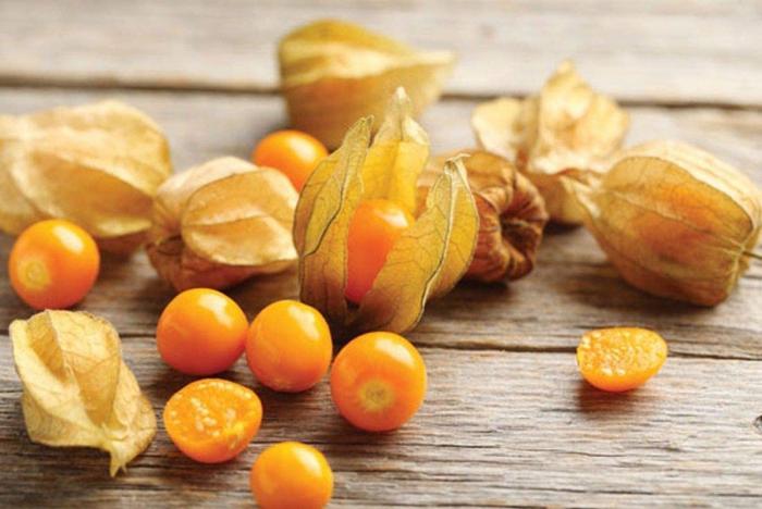 Physalis exotisches Obst kleine orange Früchte in dünnen Hüllen