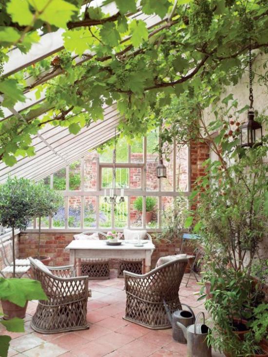 Χειμερινός κήπος για να αγκαλιάσετε πολλά πράσινα φυτά δύο ψάθινες πολυθρόνες ευχάριστη ατμόσφαιρα