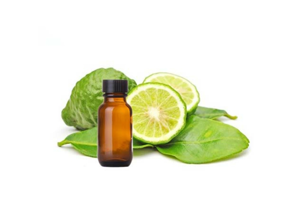 Zitrusfrüchte Bergamotte Öl Pflanze gesundheitliche Vorteile