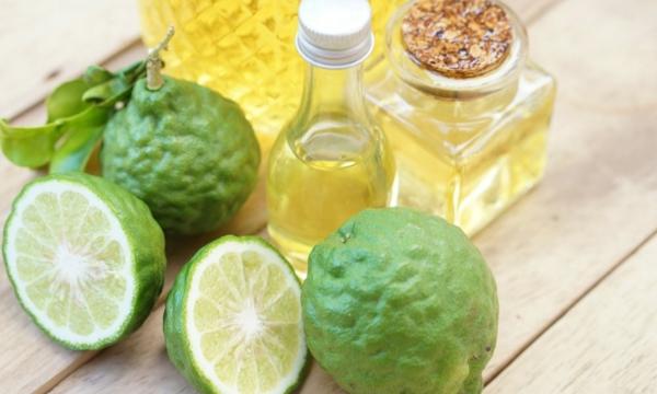Zitrusfrüchte Bergamotte Öl Wirkung Pflanze