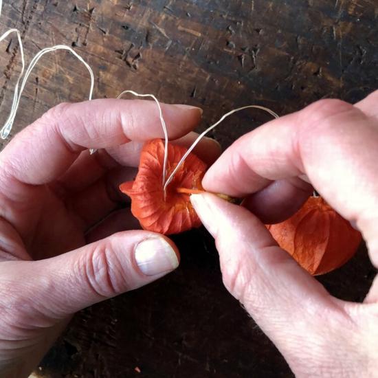 einfache anleitung lichterkette mit lampionblume selber machen