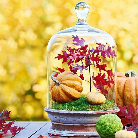 hübsche herbstdeko im glas minikürbis herbstblätter