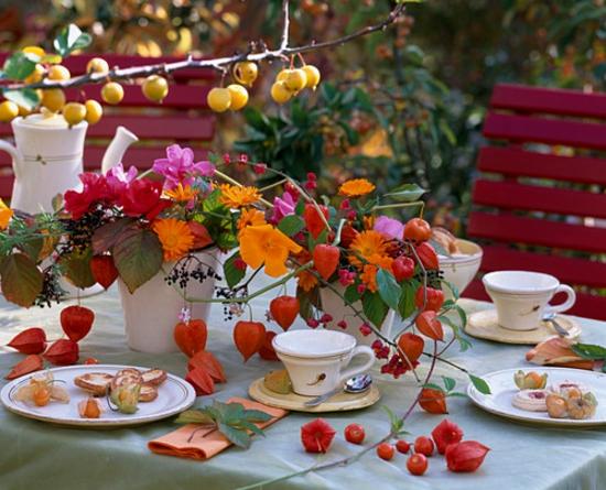 herrliche tischdeko herbst lampionblume herbstblumen