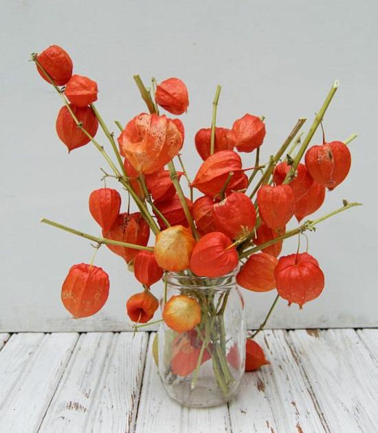 lampionblume glasvase tischdeko herbst