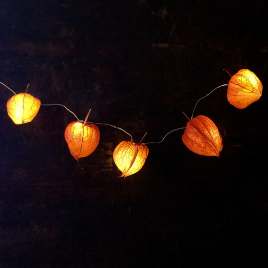 lichterkette lampionblume physalis