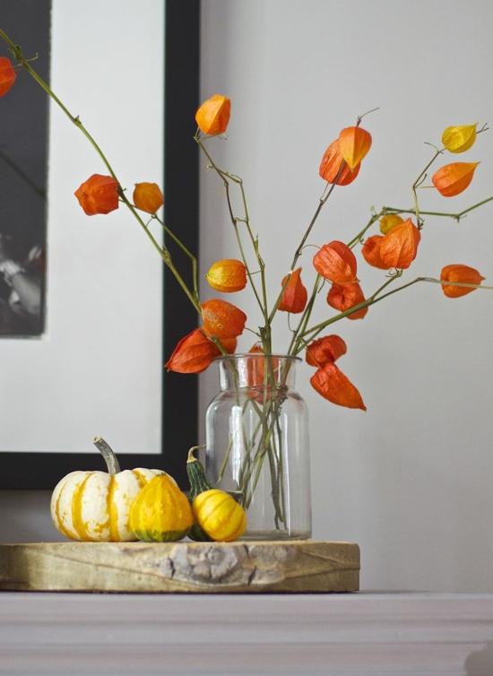 puristische herbstdeko mit lampionblume