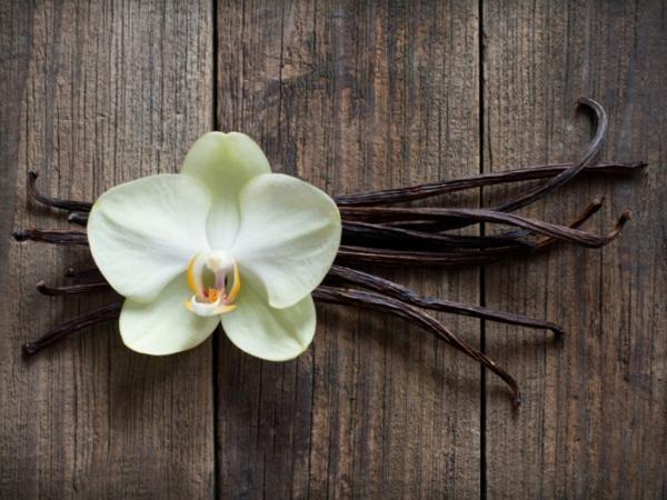 raumdüfte vanille wirkung