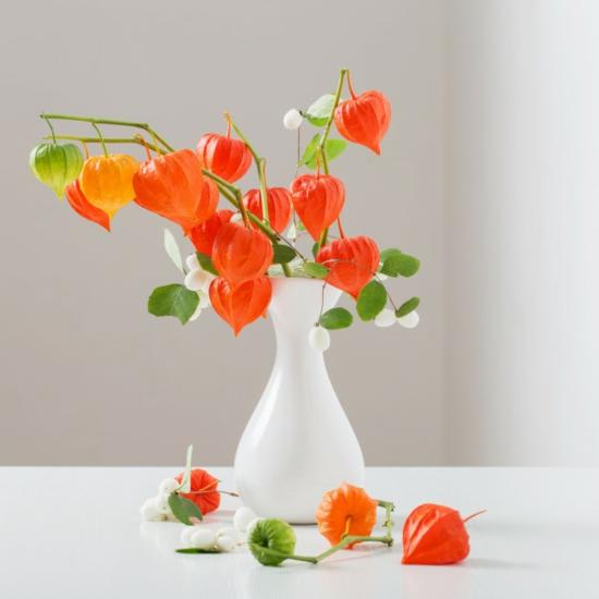 tischdeko vasenblumen lampionblume physalis weiße beeren