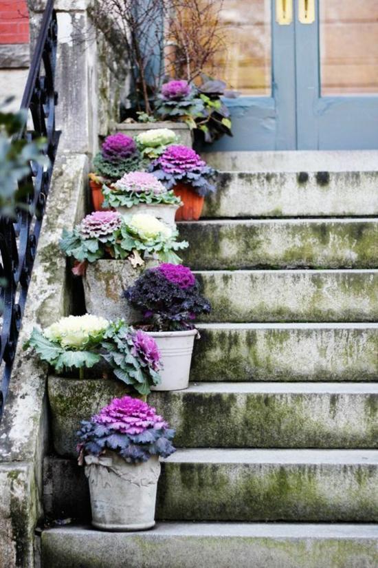 treppe dekorieren eingansdeko herbst zierkohl
