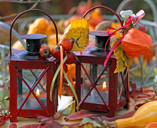 wunderschöne tischdeko herbst lampionblume physalis