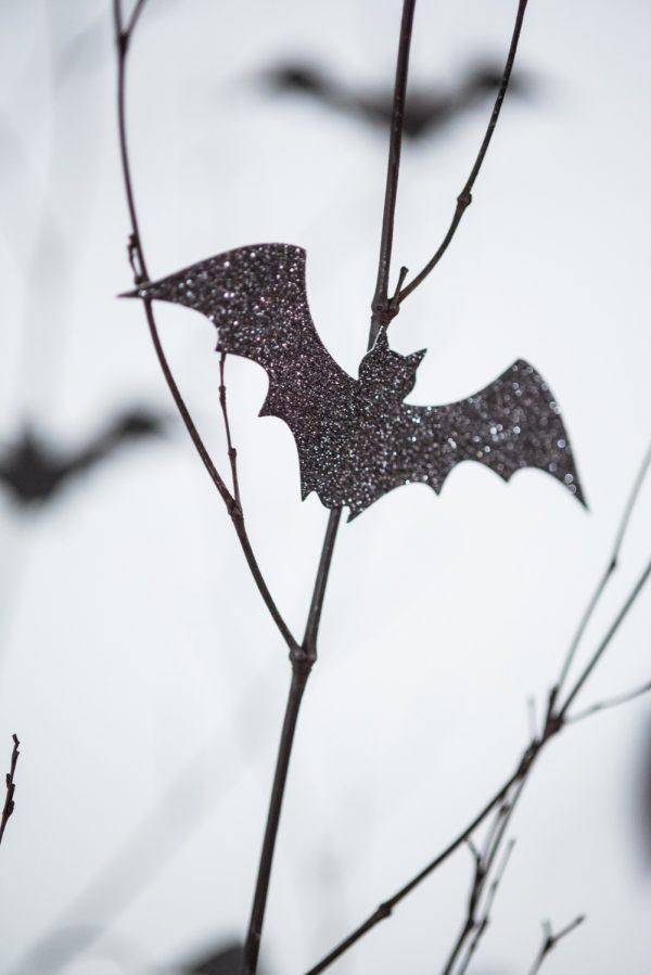 Fledermaus basteln mit Kindern zu Halloween – 50 bezaubernde Ideen und Anleitungen fledermäuse schwarz papier zweige