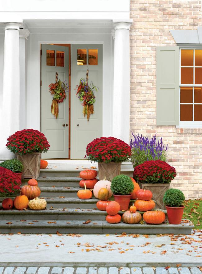 Herbstdeko für draußen modern eyecatching herrliche weinrote Chrysanthemen zahlreiche Kürbisse auf den Treppen weiße Tür zwei Herbstkränze
