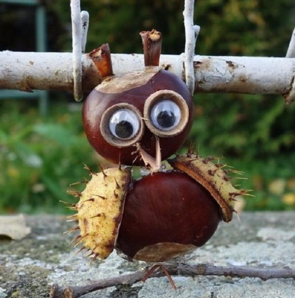 Kastanienfiguren - schöne Eulenaugen