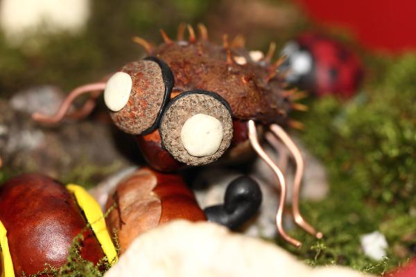 Spinnen DIY Basteln mit Kindern Kastanienfiguren