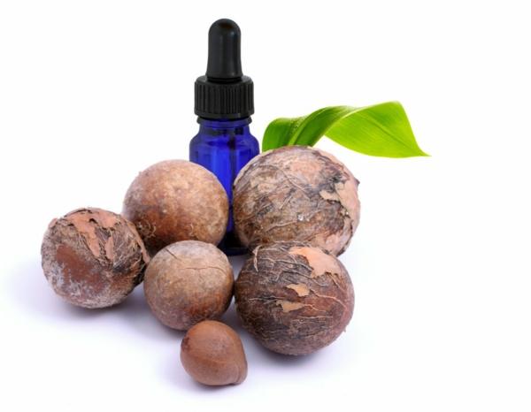 Tamanu Öl Polynesien Pflanze Früchte Kerne Hautpflege Tipps