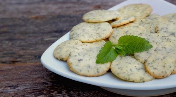 Zitronenmelisse Tee – Immunität und Psyche durch die Gaben der Natur stärken kräuter kekse lecker gesund