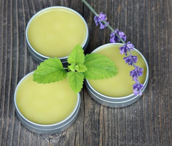 Zitronenmelisse Tee – Immunität und Psyche durch die Gaben der Natur stärken salbe creme selber machen
