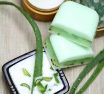 Aloe Vera Gel selber machen- ein gesundes Elixier und etwas mehr